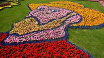 Keukenhof Gardens and Tulip Fields Tour from Amsterdam, Amsterdam, Cultural Tours