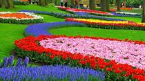 Private Keukenhof Gardens and Tulip Fields Tour from Amsterdam, Amsterdam, Cultural Tours
