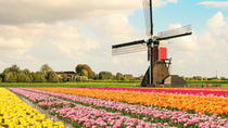 Windmills & Keukenhof Gardens and Tulip Fields Tour from Amsterdam, Amsterdam, Cultural Tours