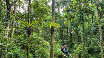 Cape Tribulation y Jungle Surfing Adventure Day desde Port Douglas, Port Douglas, 4WD, ATV & Off-Road Tours