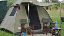 Chobe National Park Camping Safari From Victoria Falls (1 Day and 1 Night), Victoria Falls, Hiking...