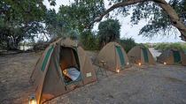 Chobe National Park Camping Safari From Victoria Falls (2 Days and 1 Night), Victoria Falls, Hiking...