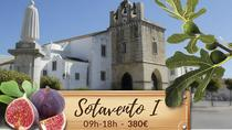 Eastern Algarve I - Faro, Olhão, Cacela Velha & Vila real de Santo António, Faro, Private...