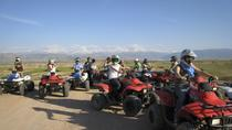 Marrakech Palmeraie Half-Day Quad Bike Experience, Marrakech, 4WD, ATV & Off-Road Tours