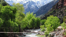 PRIVATE DAY TRIP TO OURIKA VALLEY FROM MARRAKECH, Marrakech, Private Day Trips