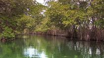 Black River Safari & Ys Falls, Montego Bay, 4WD, ATV & Off-Road Tours