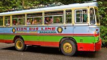Chukka Zion Bus, Runaway Bay, Cultural Tours