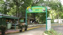 Nine Miles & Dunns River, Montego Bay, Cultural Tours