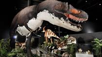 Branson Dinosaur Museum, Branson, Museum Tickets & Passes