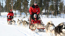 Lapland Christmas Family-Friendly Husky Sled Ride from Rovaniemi, Lapland, Christmas