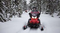Lapland Christmas Moonlight Experience by Snowmobile from Rovaniemi, Lapland, Christmas