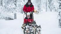 Lapland Husky Sled Ride from Saariselkä, Lapland, Ski & Snow