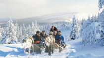 Lapland Snowmobile Safari to a Reindeer Farm from Saariselkä Including Reindeer Sleigh Ride, ...