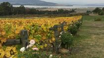 Mona and Wine Experience Tour, Hobart, Food Tours