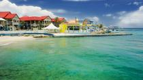 Grand Cayman Shore Excursion: Island Sightseeing Tour by 4x4, Cayman Islands, Eastern Caribbean ...