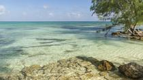 Rum Point Tour from George Town by Land Rover, Cayman Islands, Bus & Minivan Tours