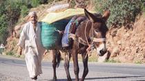 Excursion d'une demi-journée dans la vallée de l'Ourika depuis Marrakech, Marrakech, Day Trips