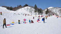 GALA Yuzawa Resort: Sledding, round-trip gondola ticket, gloves purchase, and boots rental package ...
