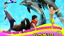 Dolphins Bay Phuket Admission Ticket, Phuket, Attraction Tickets