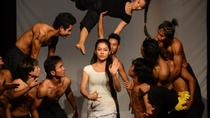 Phare: The Cambodian Circus Show in Siem Reap, Siem Reap, Private Sightseeing Tours