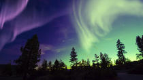 Northern Lights Small-Group Tour from Tromso Including Photography Tips, Tromso, Day Trips
