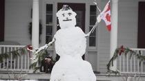 Winter Wonderland Food Tour in Niagara-on-the-Lake , Niagara Falls & Around, Food Tours