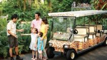 1-Day Singapore Zoo Ticket with Tram Ride
