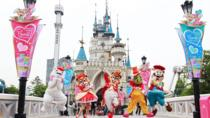 Lotte World Attraction Ticket, Seoul, Theme Park Tickets & Tours