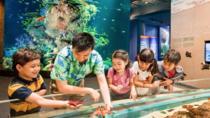 SEA Aquarium Admission E-ticket