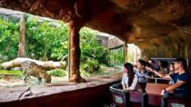 Singapore River Safari Ticket, Singapore, Attraction Tickets