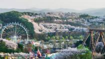 Skip the Line: Everland Attraction Ticket, Suwon