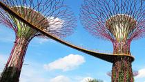 Skip the Line: Gardens by the Bay E-ticket, Singapore, Attraction Tickets