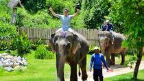 Luang Prabang Elephant Adventure Day Tour, Laos, Day Trips