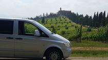 Brunello di Montalcino Wine Tour of 3 Wineries with Pairing Lunch, Siena