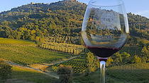 Montepulciano Wine Tour ( 3 wineries and lunch ), Siena, Wine Tasting & Winery Tours