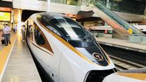 Private PEK Airport Departure Transfer from Tianjin with Bullet Train Experience, Tianjin, Airport ...