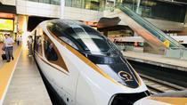 Private Tianjin Port Departure Transfer from Beijing by Bullet Train Experience, Beijing, Airport & ...