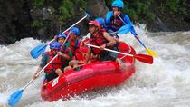 Ayung Rafting and Ubud Tour, Ubud, Private Sightseeing Tours