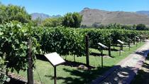 HALF DAY CPT PRIVATE WINE TOUR DRIVE, Cape Town, Wine Tasting & Winery Tours