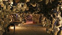 Parmigiano-Reggiano, Culatello di Zibello and Lambrusco Wine Discovery, Parma, Day Trips
