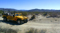 Joshua Tree Hummer Adventure from Palm Desert, Palm Springs