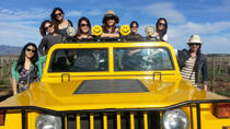 Wine Tour by Hummer from Santa Barbara or Solvang, Santa Barbara, Wine Tasting & Winery Tours