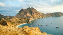 4-Day Komodo National Park and Exotic Island Adventure from Labuan Bajo (Flores), East Nusa ...