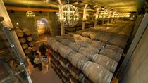 Pagos del Rey Wine Museum and Collegiate Church Tour, Valladolid, Cultural Tours