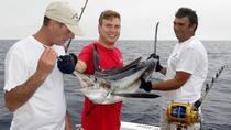 Azores, São Miguel, Big Game Fishing - Half Day Afternoon - Oceantur, Ponta Delgada, Other...
