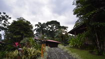 Coffee Route Experience at Finca Argovia Resort in the Soconusco Region, Tuxtla Gutiérrez, ...