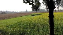 A day tour to Village Life : Worthy Experience, Amritsar, Cultural Tours