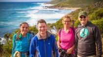 Margaret River Discovery Tour - The tour for people who don't do tours!, Margaret River, Cultural...