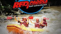 All Inclusive River Rafting, Monkey Forest, Coffee farm, waterfall tour, Kuta, Coffee & Tea Tours