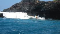 Deluxe Morning Snorkeling Adventure, Big Island of Hawaii, 4WD, ATV & Off-Road Tours